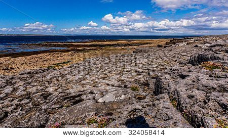 View Of The Rocky Limestone Coast Y Flores Entre Las Rocas On The Island Of Inis Oirr With The Sea I