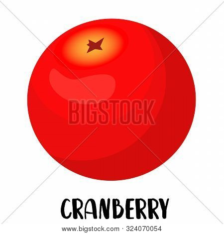 Cranberry Berry Character On A White Background. Funny Pictures For Kids Pink Color.mooseberry.