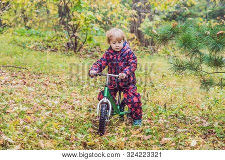 Little Boy Having Fun On Bikes In Autumn Forest. Selective Focus On Boy
