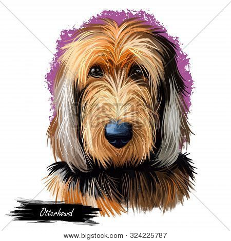 Otterhound Pet Having Long Fur Isolated Watercolor Portrait Digital Art. Canis Lupus Familiaris Pet,