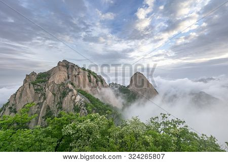 Mountain and Fog at Bukhansan National Park in Seoul South Korea poster