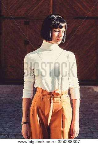 High Waisted. Woman Attractive Brunette Fashionable Outfit. Femininity And Emphasize Feminine Figure