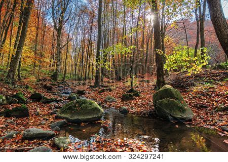 Water Stream Among The Rock In Forest. Beautiful Nature Scenery On A Sunny Autumn Afternoon. Crystal