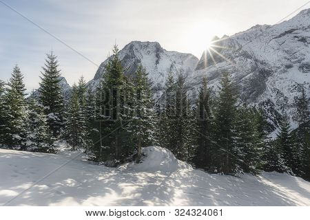 Snowy Fir Trees And Snow-capped Mountain Peaks In Ehrwald, Austria. Winter Landscape With Snow And S