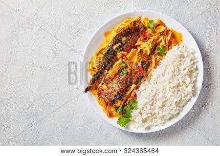 Grilled Saba yellow curry, Panang curry with mackerel fish served with steamed long grain rice on a plate on a concrete table  view from above, flatlay, free space poster