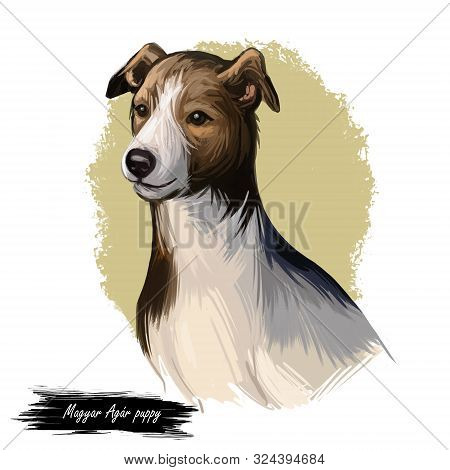 Magyar Agar Puppy Dog Sighthound Canine Digital Art. Austro-hungarian Empire Originated Pet, Domesti