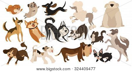Set Of Funny Dogs. Collection Of Cartoon Playing Dogs. Vector Illustration Of Happy Pets For Kids. S