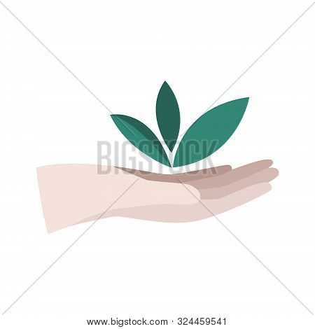Hand Hold Green Plant. Environmental, Reforestation, Eco Concept. Business Growth Icon. Flat Vector