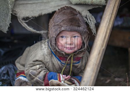 Tundra, The Extreme North, Yamal, The Pasture Of Nenets People, Children On Vacation Playing Near Re