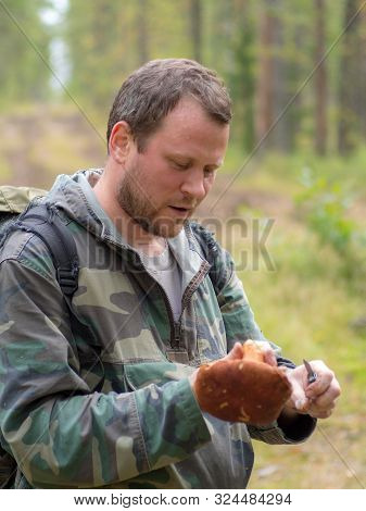 Mushroom Picker Who Has Found Cepe In The Wood