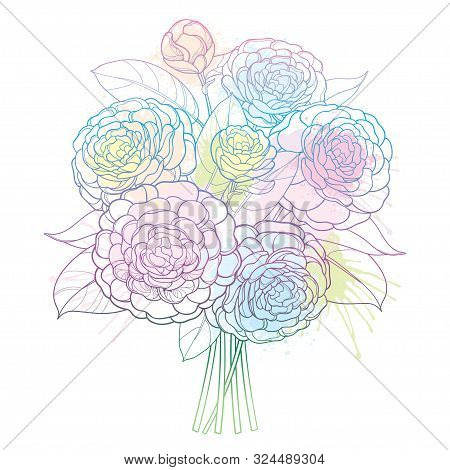 Vector Bouquet With Outline Camellia Flower Bunch, Bud And Leaf In Pastel Blue, Pink And Green Isola