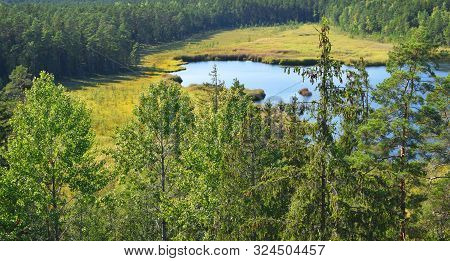 Landscape With Green Forest Trees And Small Lake Areal View In Early Autumn.