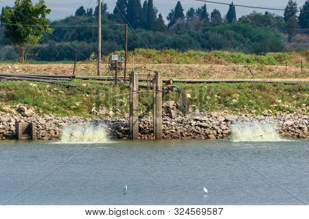 Fish Growing Ponds And Migrating Birds In Israel