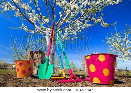 Photo of colorful rakes and spade on garden