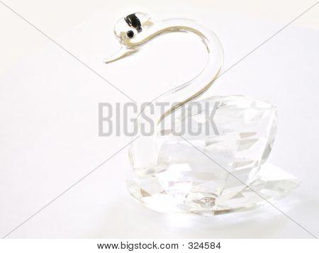 Glass Swan 1