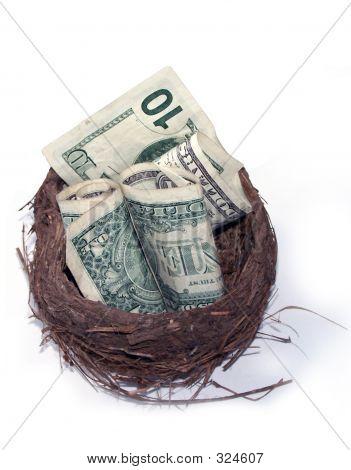 Financial Nest Egg.