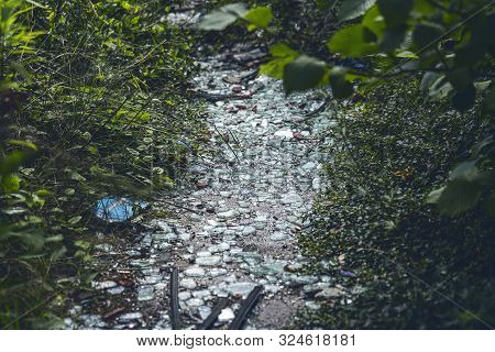 Close Up, Path With Broken Glass And Garbage