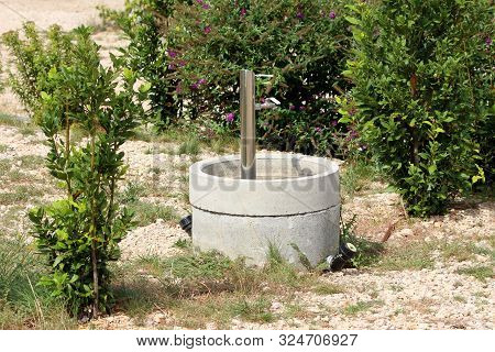 Outdoor Shiny Inox Metal Water Fountain With Hose Connection Pipe Surrounded With Small Bushes And S