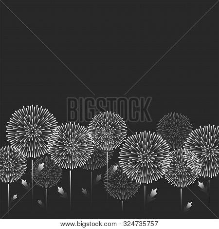 Feminine Pattern Of White Dandelion Flowers. Horizontal Strip Of Refined Balls Of Plants Bottom Illu