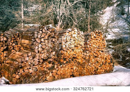 Winter Forest Landscape With Log Stacks (firewood)
