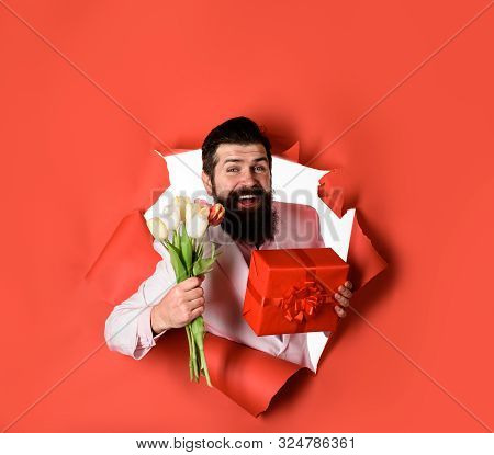 Handsome Young Man Holds Gift Box And Flowers. Businessman With Gift And Tulips Looking Through Pape