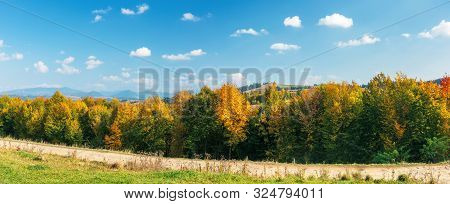 Trees In Colorful Foliage On A Sunny Day. Gravel Road Across The Panoramic Landscape In Mountains. F