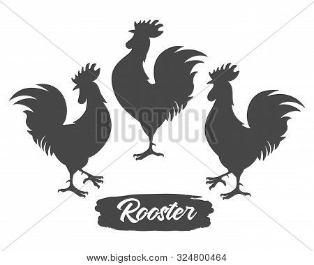 Rooster Silhouettes. Chicken Cock Silhouette Set, Farm Bantam Birds Black Vector Images Isolated On