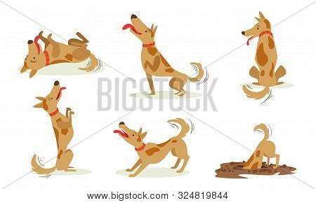 Collection Of Funny Brown Dog In Different Situations Set, Cute Animal Character Playing, Barking, D