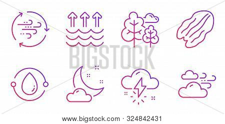 Wind Energy, Thunderstorm Weather And Evaporation Line Icons Set. Cold-pressed Oil, Tree And Pecan N