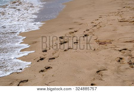 The Footprints In The Sand Along The Shore And The Quiet Waves In Spain. Sandy Beach, Happy Vacation