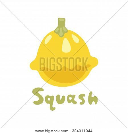 Seasonal Squash, Gourd Vegetable Vector Illustration. Patty Pan Squash. Green And Yellow Image Isola