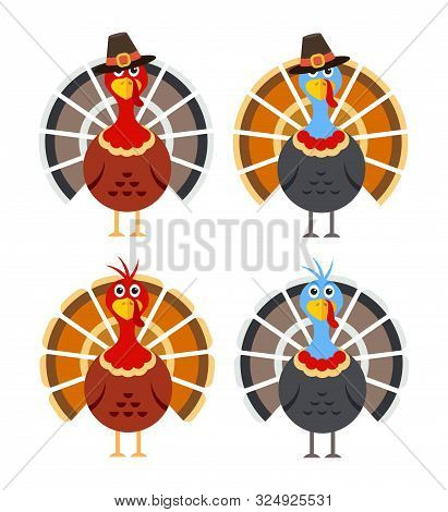 Vector Set Of Cartoon Turkey Birds For Thanksgiving Day Illustrations. Colorful Icons Of Thanksgivin