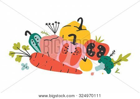 Arrangement Of Fresh Organic Vegetables, Collection Of Vector Hand Drawn Various Kinds Of Veggies. A