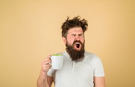 Tired Guy Hold Coffee Mug. Morning Refreshment. Sleepy Man Holds Cup Of Coffee. Yawning Man Hold Mug