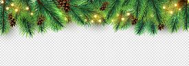 Christmas Border. Holiday Garland Isolated On Transparent Background. Vector Christmas Tree Branches