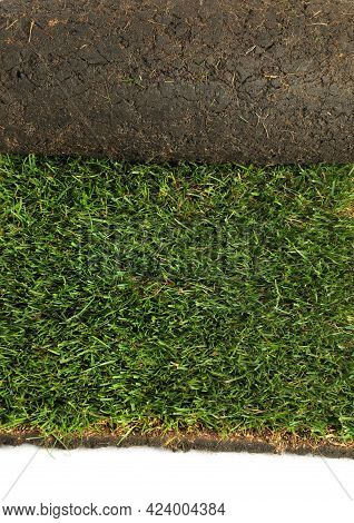 Rolled Sod With Grass On White Background, Closeup