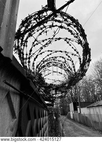 Barbed Wire On A Dark Concrete Fence. Black And White Photography
