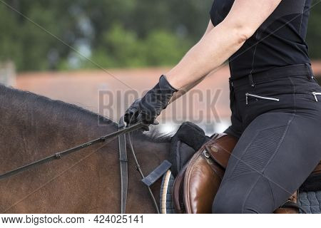 Pretty Girl In A Riding Gear, Bridle, Gloves, Saddle, Black Suit