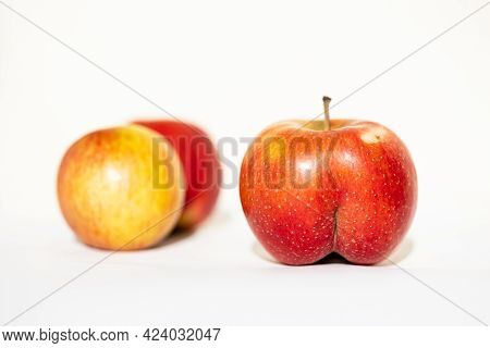 Unusual Shape Of Bright Ripe Red Apple In The Shape In The Light Of The Sun On A White Background Wi
