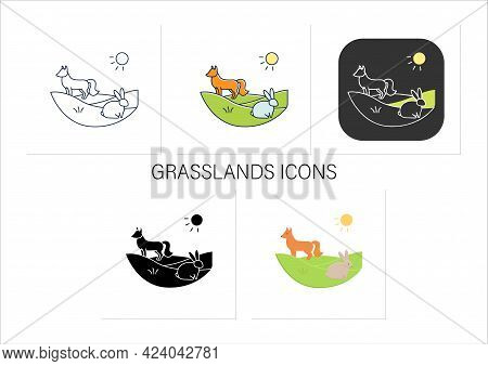 Grasslands Icons Set.fox, Rabbit Live In Grasslands.generally Located Between Deserts And Forests.bi