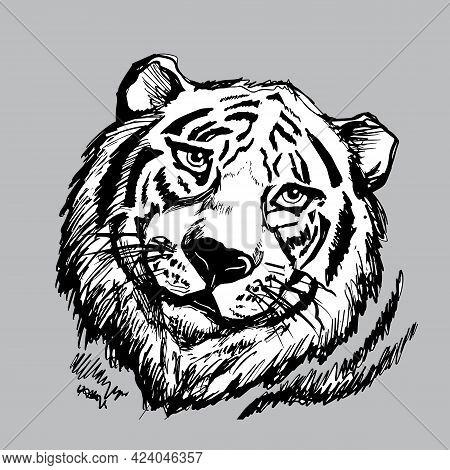 Tiger Head On Grey Background, Portrait Derawn Black Contour.,line Art. Graphics Vector Illustration