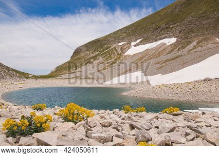 View Of Yellow Wild Flowers Of Mountain In The Famous Lago Di Pilato During Spring Day Of Sun In The