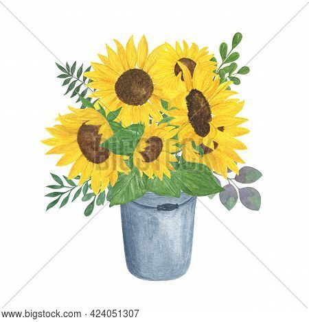 Bucket Of Sunflowers, Leaves Watercolor Illustration, Floral Composition, Field Agricultural Plant S