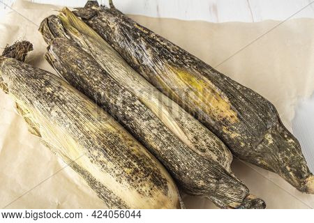 Spoiled Moldy Food. Cobs Of Corn With Mold On White Background