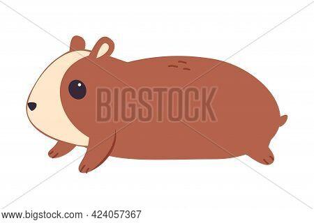 Cute Hamster, Adorable Funny Pet Animal Character Cartoon Vector Illustration