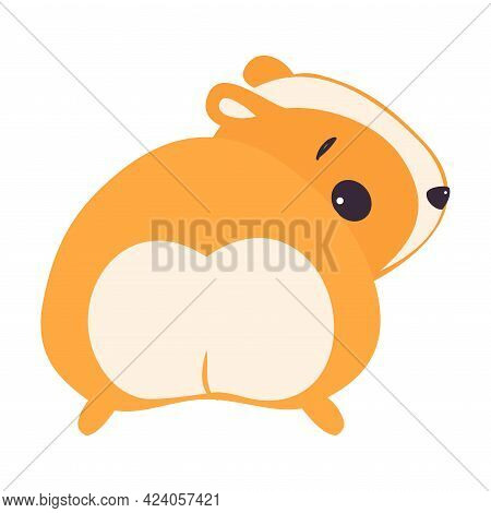 Cute Hamster View From Behind, Adorable Funny Pet Animal Character Cartoon Vector Illustration