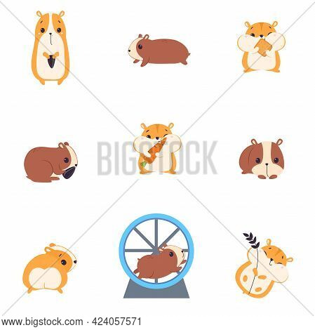 Cute Hamsters Set, Adorable Funny Red Pet Animals Cartoon Vector Illustration