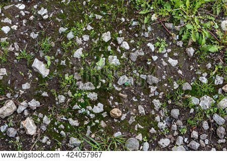 Ground Surface With Slag Stones, Earth And Grass Sprouts Texture And Background