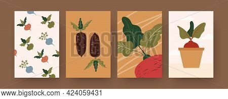 Set Of Contemporary Art Posters With Root Vegetables. Radish, Potted Beetroot Cartoon Vector Illustr