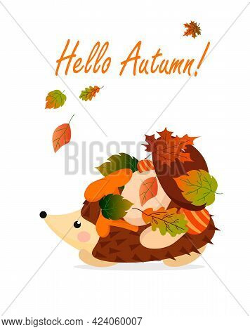 Autumn Card With Hedgehog, Leaves And Mushrooms. Vector Illustration With Text. For Postcards, Invit